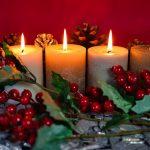Tierisch gemütlich durch den Advent